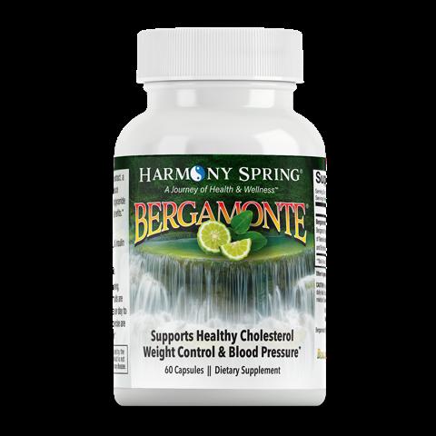 bergamonte-1000×1000-copy